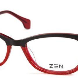 ZEN R60-C6